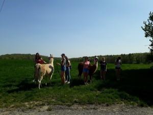 Mädchen mit Lamas