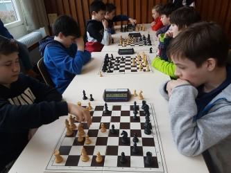Bericht von den Schulschach–Meisterschaften  des Rhein-Neckar-Kreises